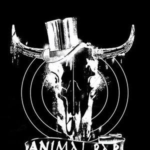 Animal Bar