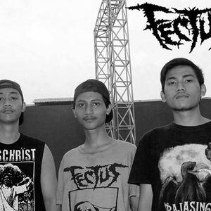 Fectus