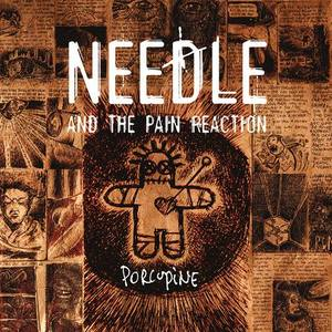 Needle And The Pain Reaction