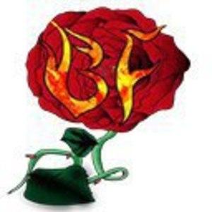Burnin' Flowers