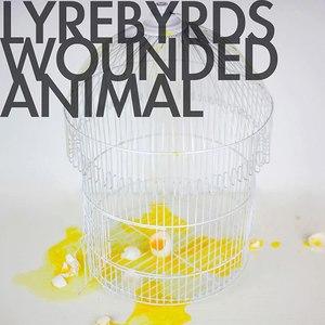 Lyrebyrds