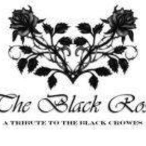 The Black Rose (A Tribute To The Black Crowes)
