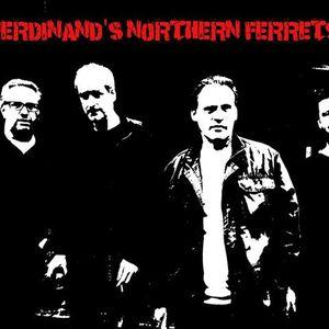 Ferdinand's Northern Ferrets