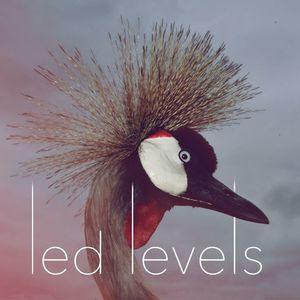 Led Levels