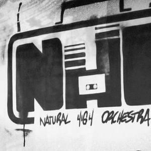 N.H.O. - Das Natural High Orchestra