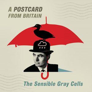 The Sensible Gray Cells