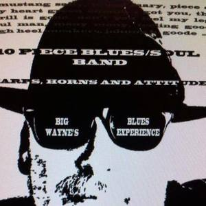 Big Wayne's Blues Experience