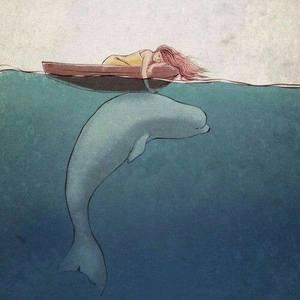 Sueño con belugas