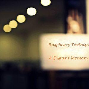 Raspberry Tortoise