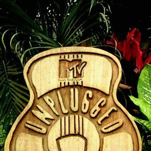 The MTV Unplugged Tribute