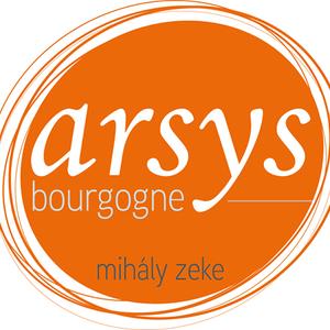 Arsys Bourgogne
