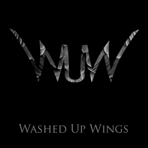 Washed up Wings