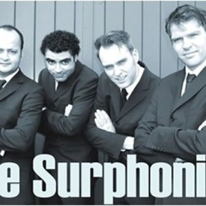 The Surphonics
