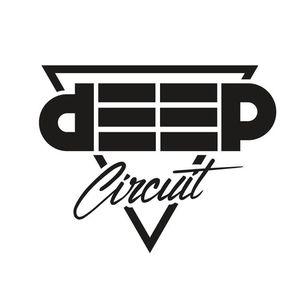 Deep Circuit