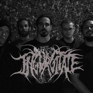 Ingurgitate