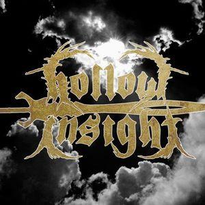 HollowInsight