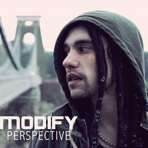 Modify Perspective