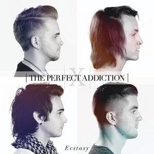 The Perfect Addiction
