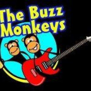 The Buzz Monkeys