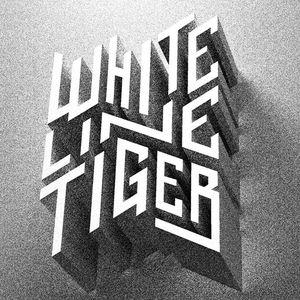 White Line Tiger