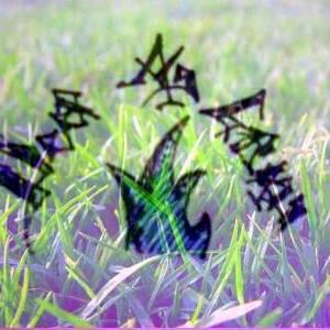 Deep As Grass