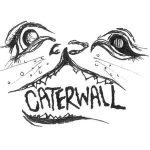 Caterwall