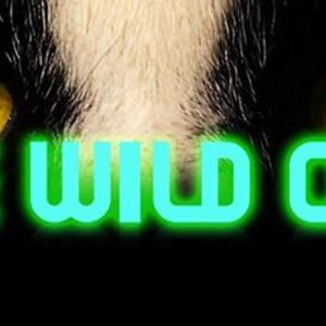 the Wild Cats