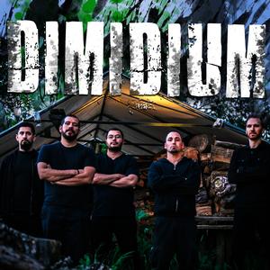 Dimidium