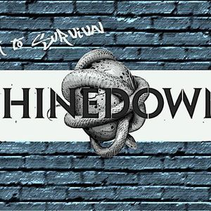 Shinedown Argentina