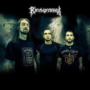 Krysantemia
