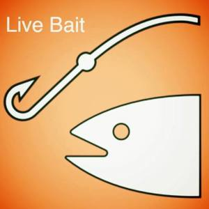 Live Bait Acoustic Duo