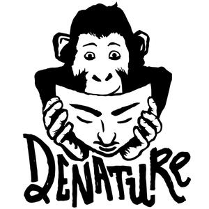 Denature Records