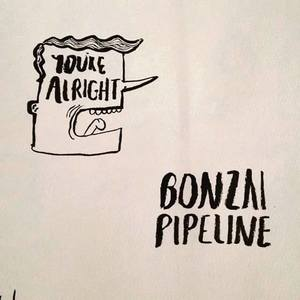 The Bonzai Pipeline