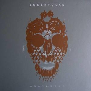 Lucertulas