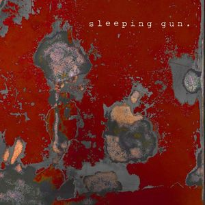 Sleeping Gun