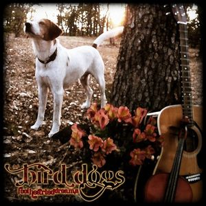 The Bird Dogs