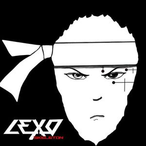 Lexoskeleton