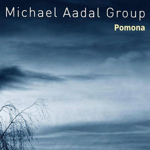 Michael Aadal Group