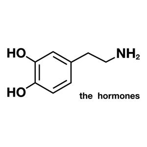 The Hormones (荷尔蒙小姐)