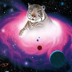 Tango Moon Tigers