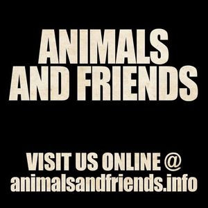 Animals and Friends