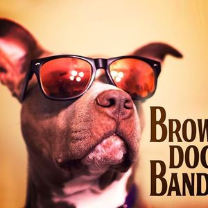 Brown Dog Band