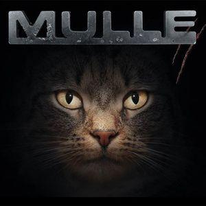 MULLE [Schwabenrock]