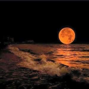 Atlas Moon