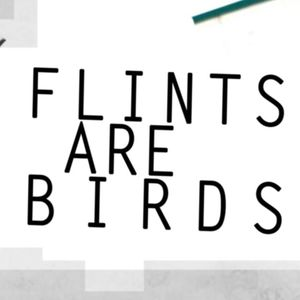 Flints Are Birds