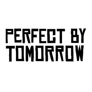 Perfect By Tomorrow - Street Team