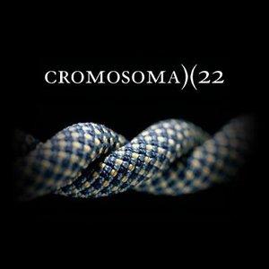Cromosoma 22