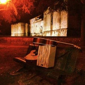 Viva La Vida Acoustic Project