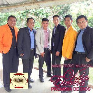Ministerio Musical Vida Eterna (veracruz)