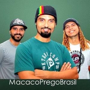 MacacoPrego Brasil
